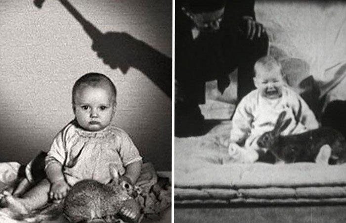 bilim-tarihinin-en-korkunc-deneylerinden-biri-kucuk-albert-deneyi-kapak-resmi1.jpg