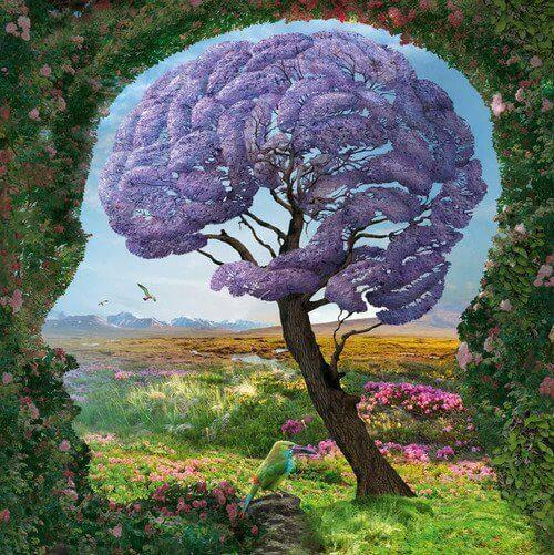 beyin-resmi.png
